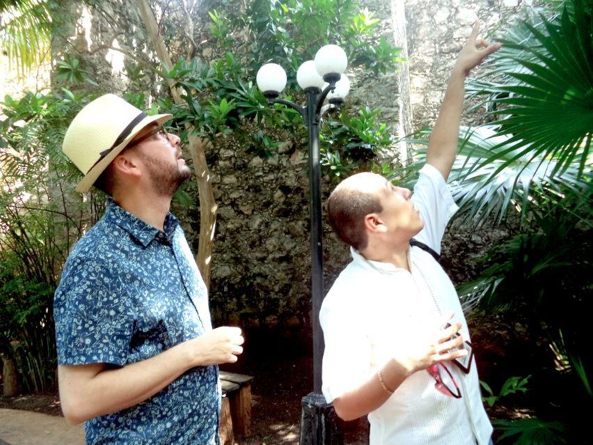 Reinterpretando san francisco de campeche a lado de jorge for Jardin botanico xmuch haltun