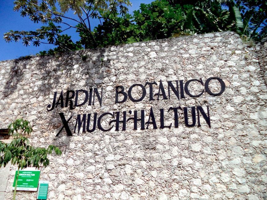 Descubre los secretos del Jardín Botánico Xmuch'Haltún en Campeche