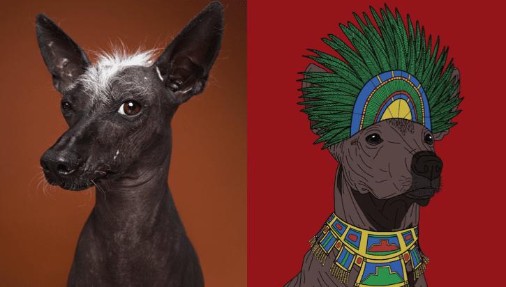 Xoloitzcuintle- Un-Guía-Trascendental-LolinaRivas